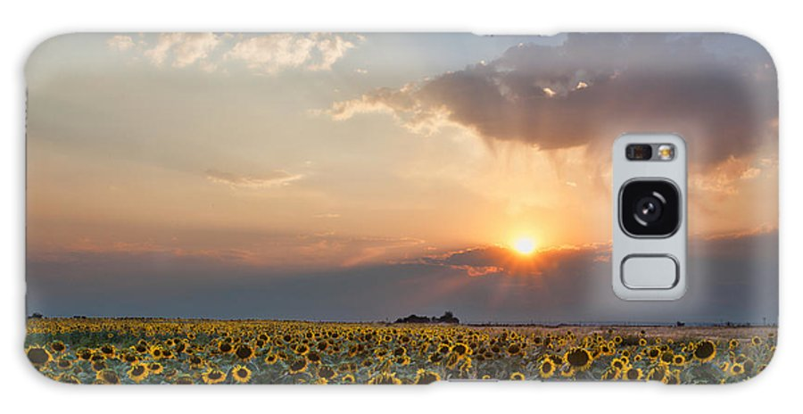 Flowers Galaxy S8 Case featuring the photograph August Dreams by Jim Garrison