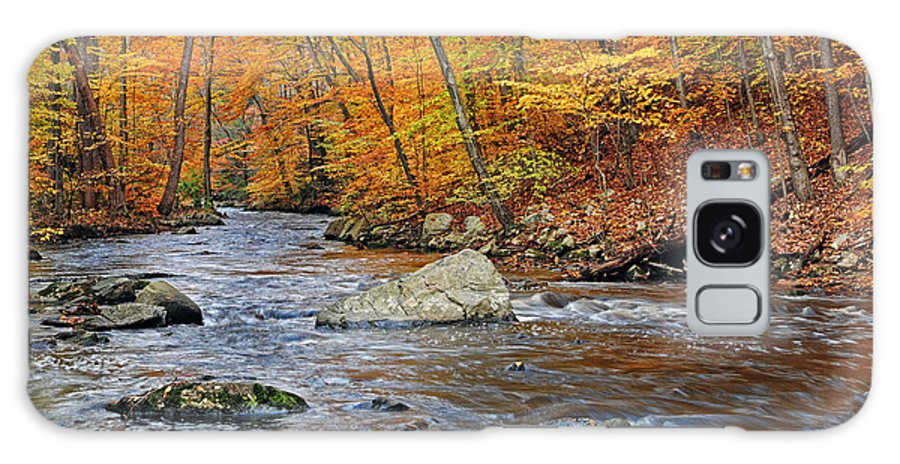Black River Galaxy S8 Case featuring the photograph Autumn At The Black River by Dave Mills