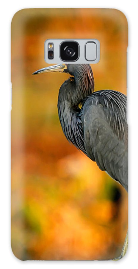 Winter Galaxy S8 Case featuring the photograph Autumn Blue Heron by Sabrina L Ryan