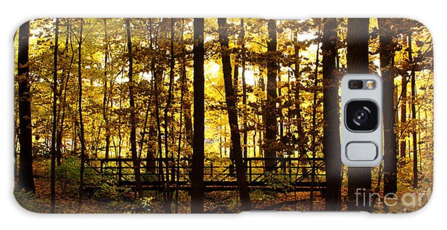 Autumnal Galaxy S8 Case featuring the photograph Autumn Bridge I by Valerie Fuqua