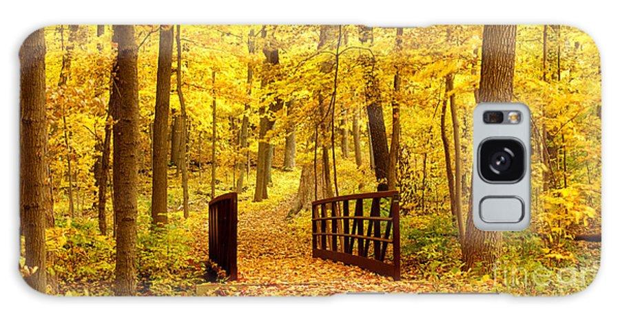 Autumnal Galaxy S8 Case featuring the photograph Autumn Bridge II by Valerie Fuqua