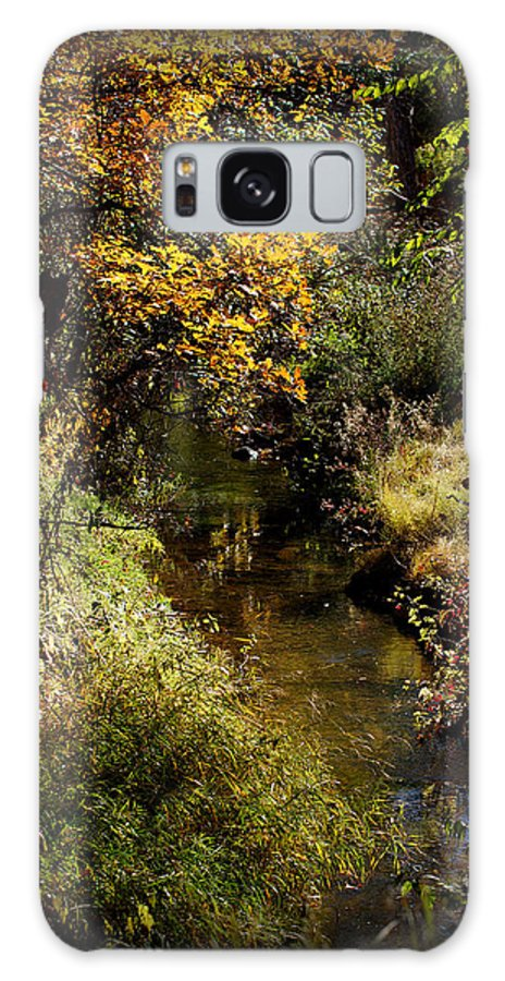 Autumn Creek Galaxy S8 Case featuring the photograph Autumn Creek by Ernie Echols