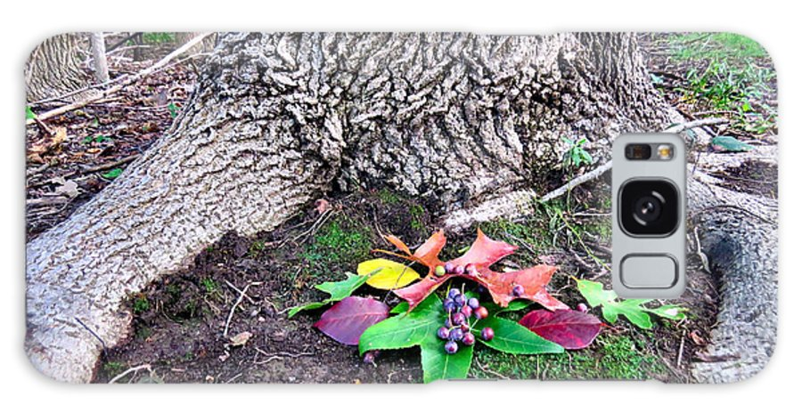 Forest Galaxy S8 Case featuring the photograph Autumn Equinox Offerings by Art Dingo