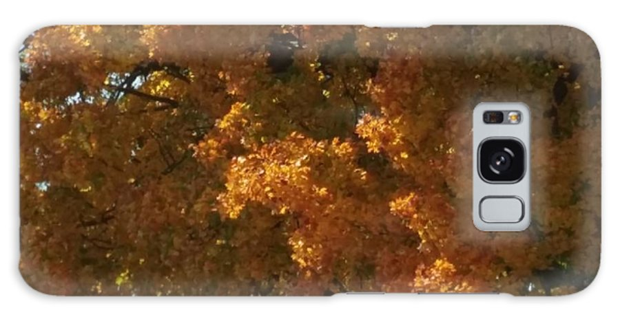 Nature Galaxy S8 Case featuring the photograph Autumn Foliage by The Little Owl Gallery