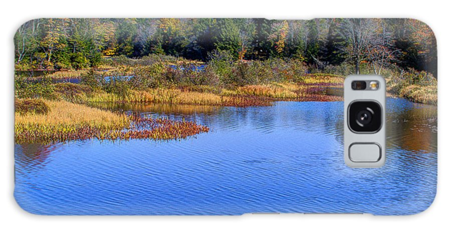 Adirondack's Galaxy S8 Case featuring the photograph Autumn In The Adirondacks II by David Patterson