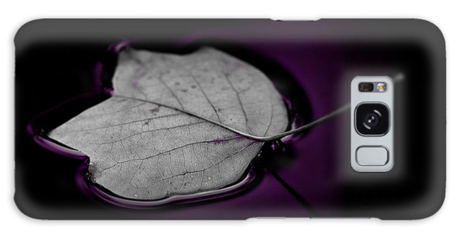 Autumn Leaf Galaxy S8 Case featuring the photograph Autumn Leaf by Gabi Siebenhuehner