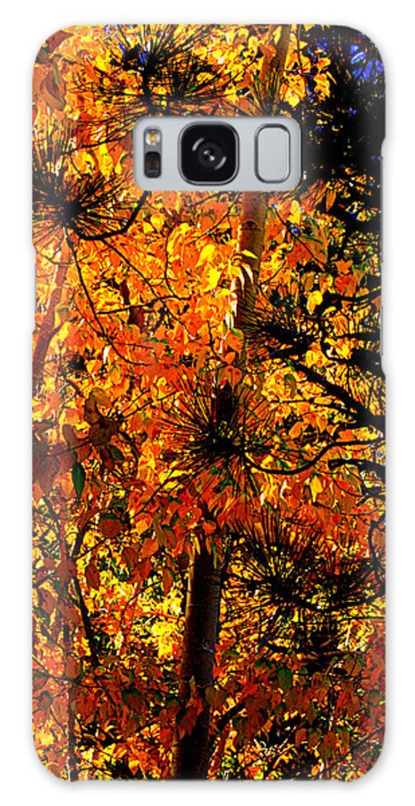 Autumn Leaves Galaxy S8 Case featuring the photograph Autumn Leaves by Lynn Bawden