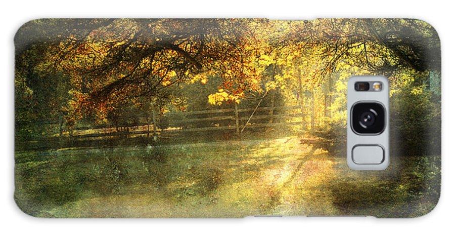 Landscape Galaxy S8 Case featuring the photograph Autumn Light by Ellen Cotton