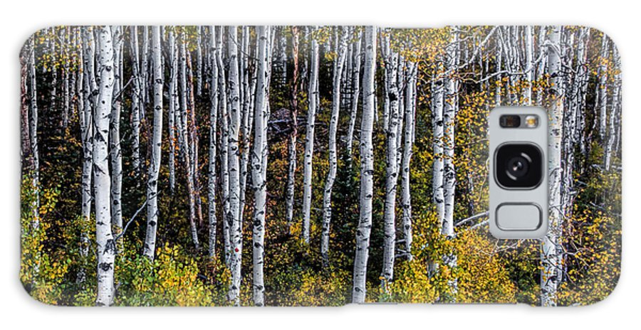 Colorado Galaxy S8 Case featuring the photograph Autumn On Mcclure Pass by Ken Smith