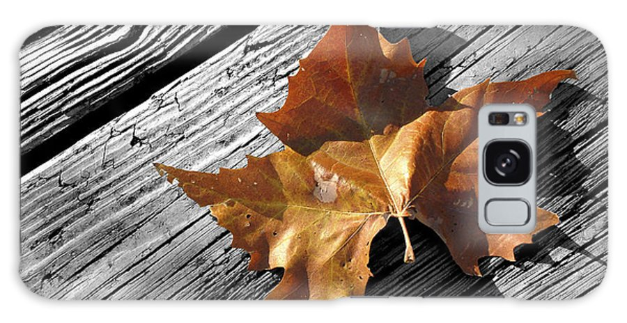 Leaf Galaxy S8 Case featuring the photograph Autumn by Ovidiu Moise