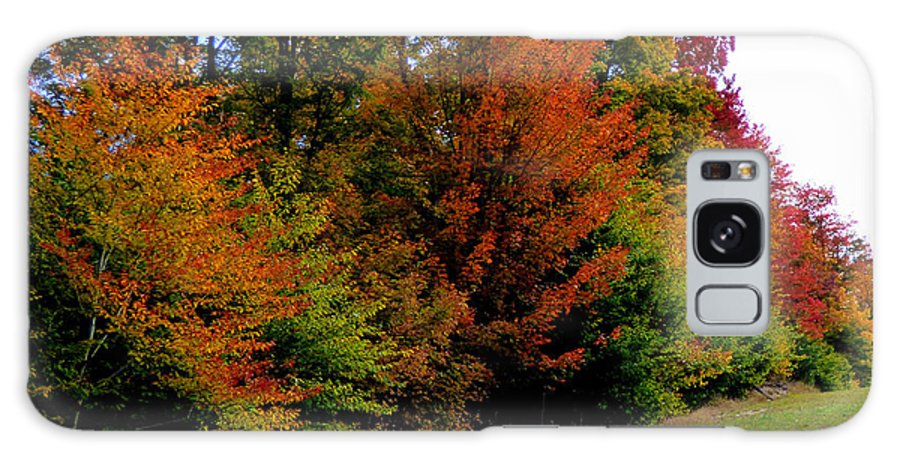 Fall Colors Galaxy Case featuring the photograph Autumn by Rennae Christman