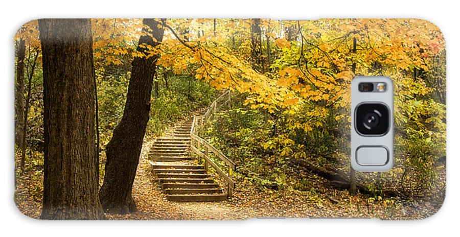 Autumn Galaxy Case featuring the photograph Autumn Stairs by Scott Norris