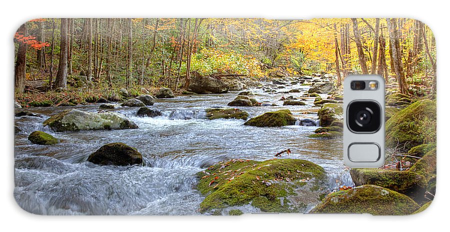 River Galaxy S8 Case featuring the photograph Autumn Stream by Judy Kennamer