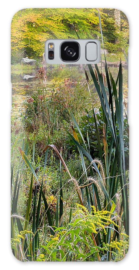 Swamp Galaxy S8 Case featuring the photograph Autumn Swamp by Bill Wakeley