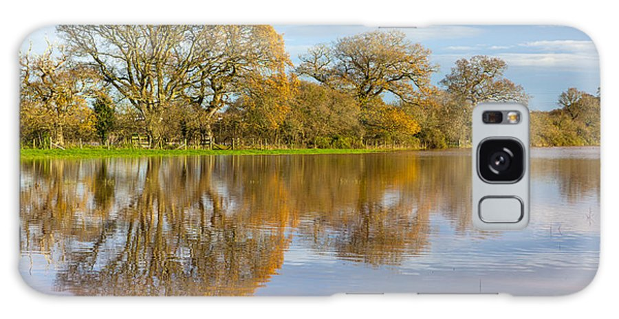 Alphington Ward Galaxy S8 Case featuring the photograph Autumn Trees by Sebastian Wasek
