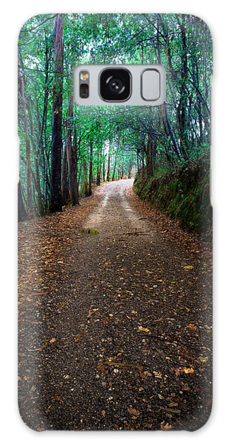 Ight Galaxy S8 Case featuring the photograph Autumn Walks by Edgar Laureano