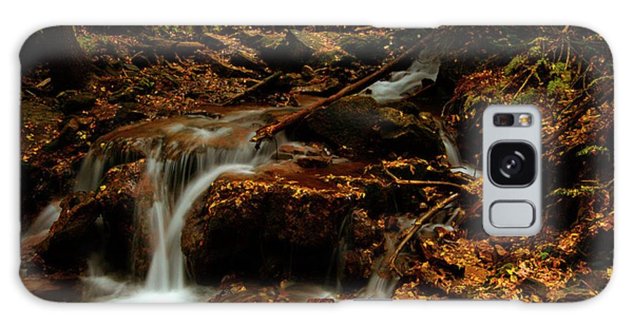 Colorado Galaxy S8 Case featuring the photograph Autumn Washed Away by Jeremy Rhoades