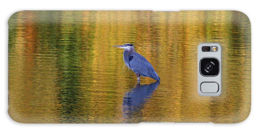 Heron Galaxy S8 Case featuring the photograph Autumn Watcher by Dan McCafferty