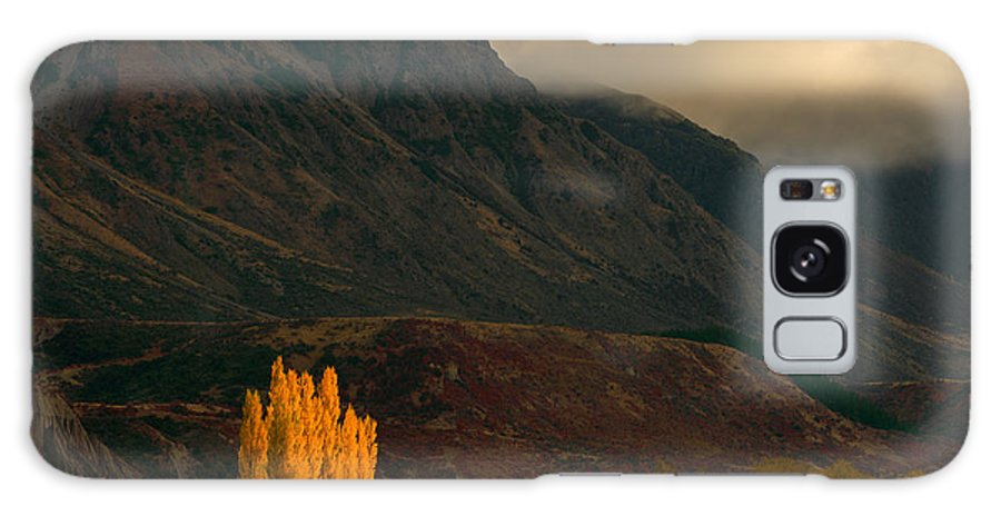 Yellow Trees Galaxy S8 Case featuring the photograph Autumnal Light by Little m Photography