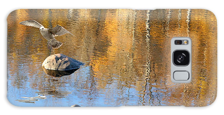 Autumn Galaxy S8 Case featuring the photograph Autumnal Reflections by Mariarosa Rockefeller