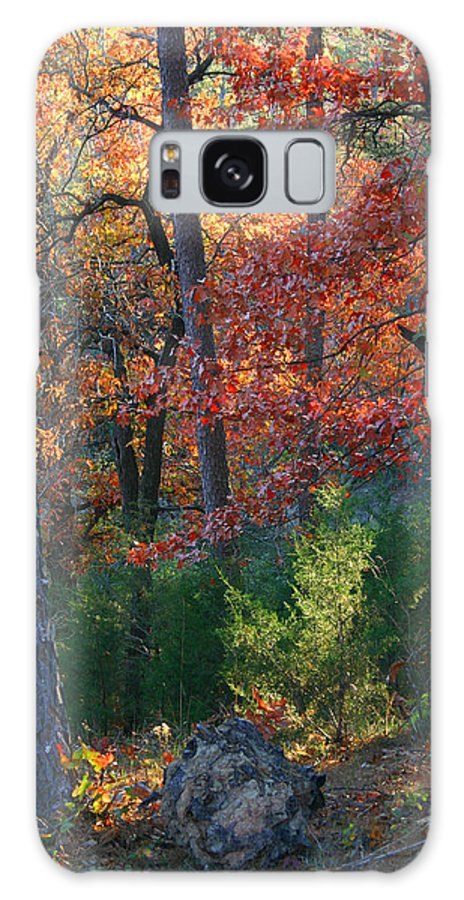 Landscape Galaxy S8 Case featuring the photograph Autumnal Rock by Nina Fosdick
