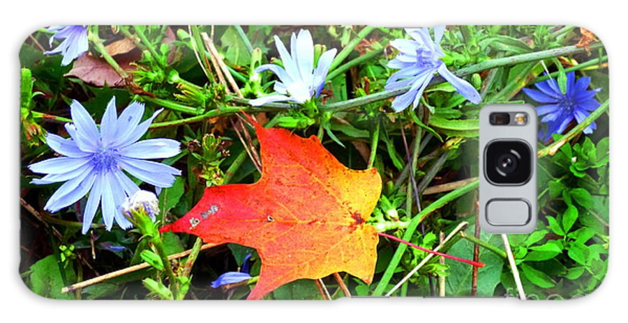 Leaf Galaxy S8 Case featuring the photograph Autumns First Leaf by Jackie Carpenter