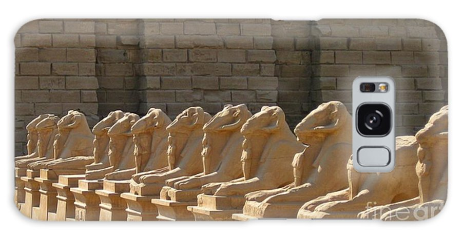 Avenue Of Sphinxes Galaxy S8 Case featuring the photograph Avenue Of Sphinxes by John Malone