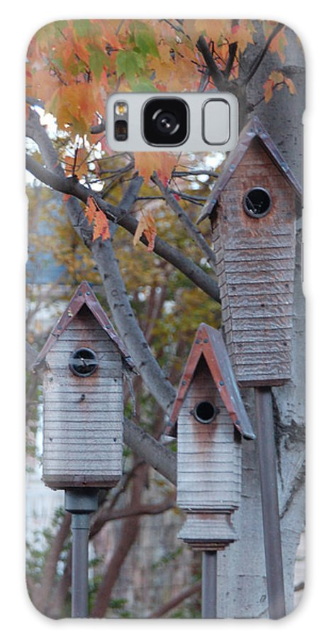 Birdhouse Galaxy S8 Case featuring the photograph Awaiting Spring by Suzanne Gaff