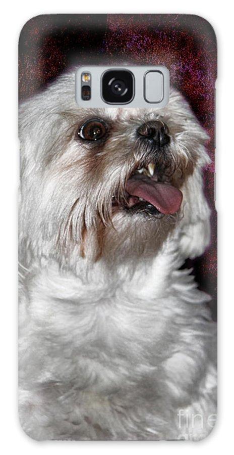 Awww Cute Awww Galaxy S8 Case featuring the photograph Awww....... Cute....... Awww by Mariola Bitner