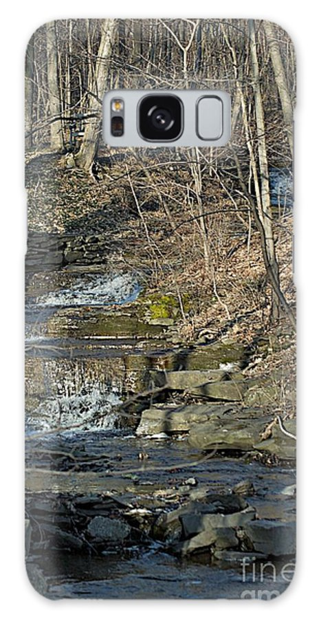 Cayauga Heights Galaxy S8 Case featuring the photograph Backyard by Joseph Yarbrough