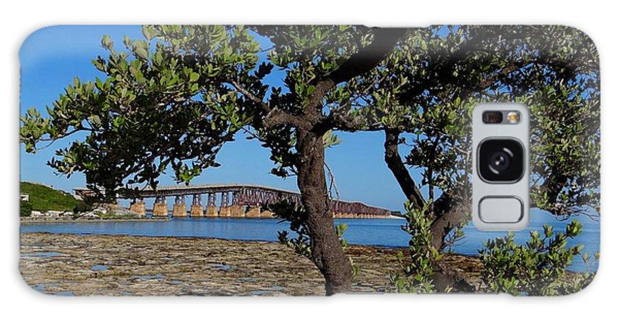 Florida Galaxy S8 Case featuring the photograph Bahia Honda Rail Bridge And Tree by Keith Stokes