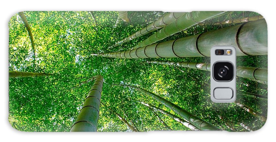 Japan Galaxy S8 Case featuring the photograph Bamboo Forest by Alex Snay