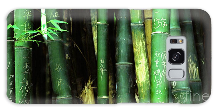 Bamboo Galaxy S8 Case featuring the photograph Bamboo Graffiti Pano - Sichuan Province by Anna Lisa Yoder