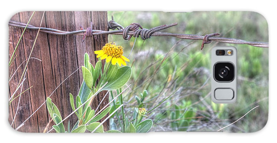 Flower Galaxy S8 Case featuring the photograph Barbed Beauty by Scott Hansen