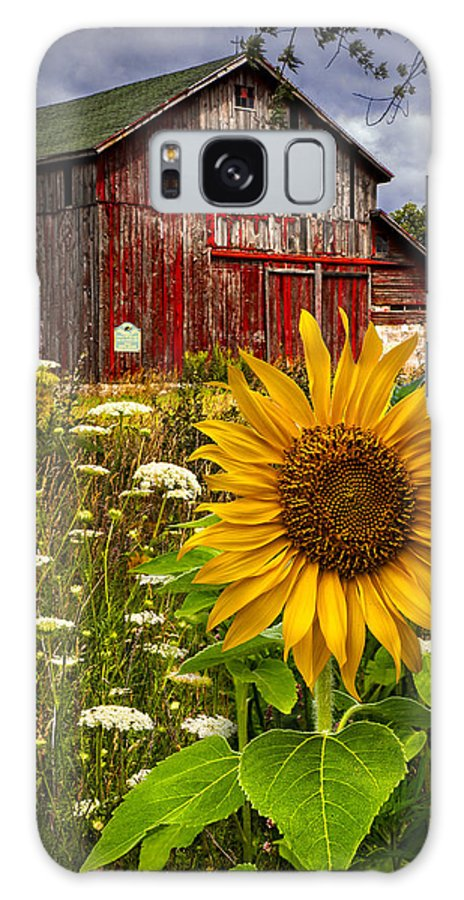 Barn Galaxy S8 Case featuring the photograph Barn Meadow Flowers by Debra and Dave Vanderlaan