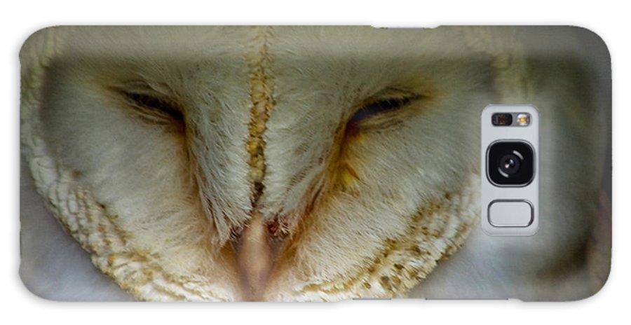 Bird Galaxy S8 Case featuring the photograph Barn Owl by Trevor Kersley
