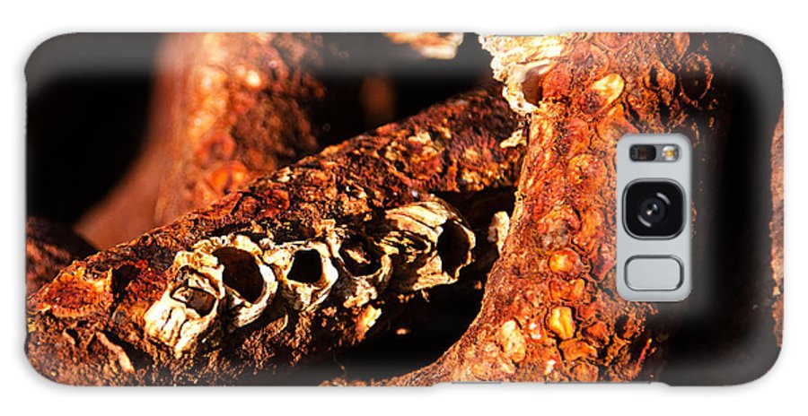 Peek Swint Galaxy S8 Case featuring the photograph Barnacles And Rust by Susie Peek