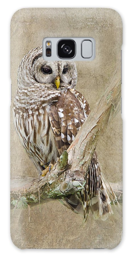 Barred Owl Galaxy S8 Case featuring the photograph Barred Owl Portrait by Betty LaRue