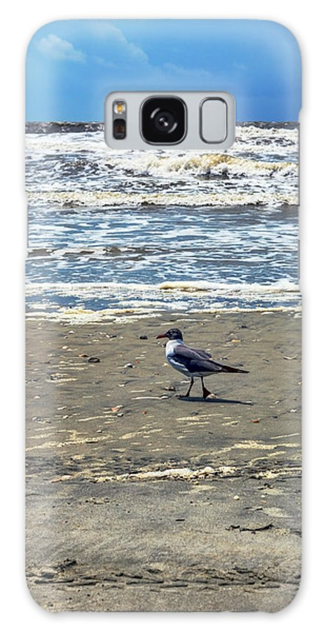Seagull Galaxy S8 Case featuring the photograph Beach Bum by Sennie Pierson