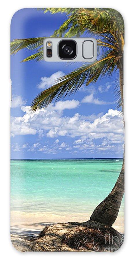 Beach Galaxy S8 Case featuring the photograph Beach Of A Tropical Island by Elena Elisseeva