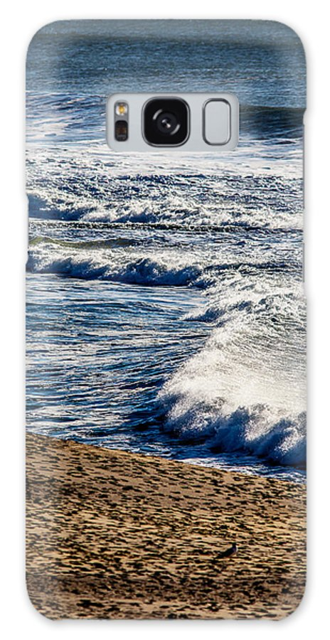 Waves Galaxy S8 Case featuring the photograph Beaches And Birds by Brian Williamson