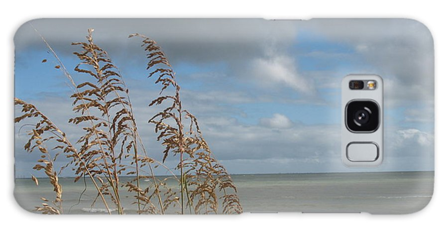 Beach Galaxy S8 Case featuring the photograph Beachview With Seaoat by Christiane Schulze Art And Photography