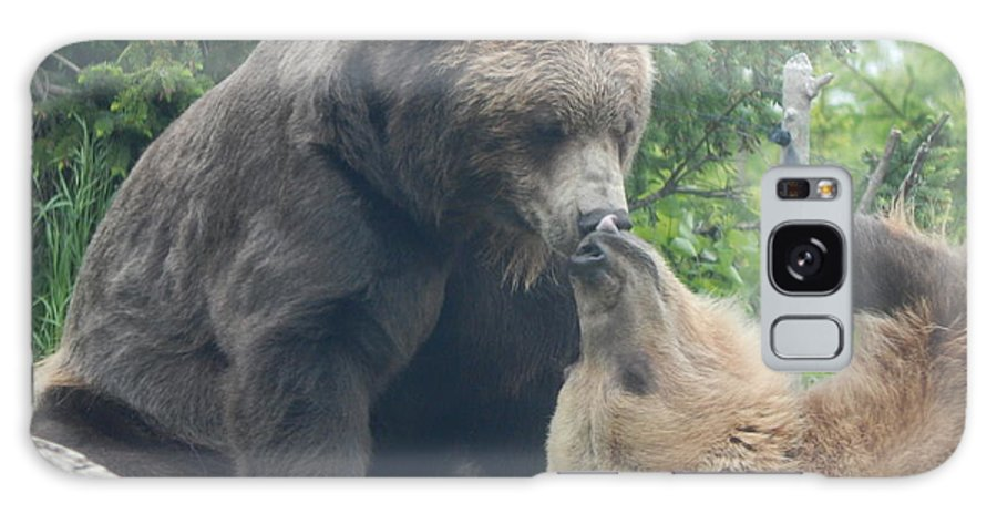 Minnesota Zoo Galaxy S8 Case featuring the photograph Bear Kisses by Laura Elder