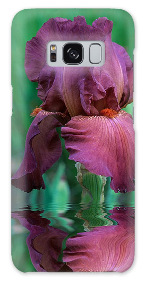 A Bearded Iris Stands In Water Galaxy S8 Case featuring the photograph Bearded Iris in Water by Keith Gondron