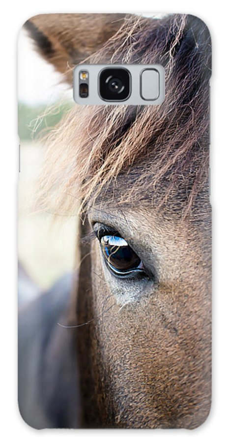 Horse Galaxy S8 Case featuring the photograph Beauty by Swift Family