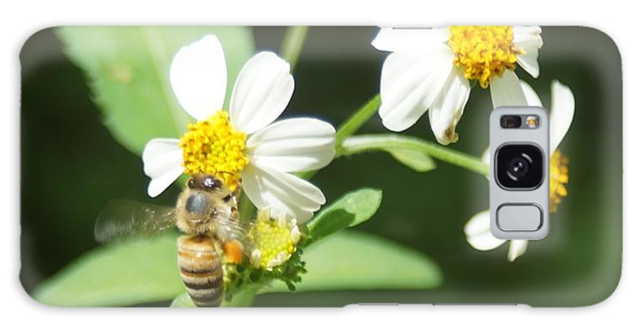 Bee Galaxy S8 Case featuring the photograph Bee-flower Pollen by Miguel Hernandez