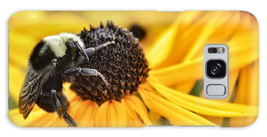 Bee Galaxy S8 Case featuring the photograph Bee There by Sue Small