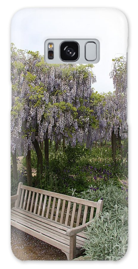 Flowers Galaxy S8 Case featuring the photograph Bench And Wisteria by Christiane Schulze Art And Photography