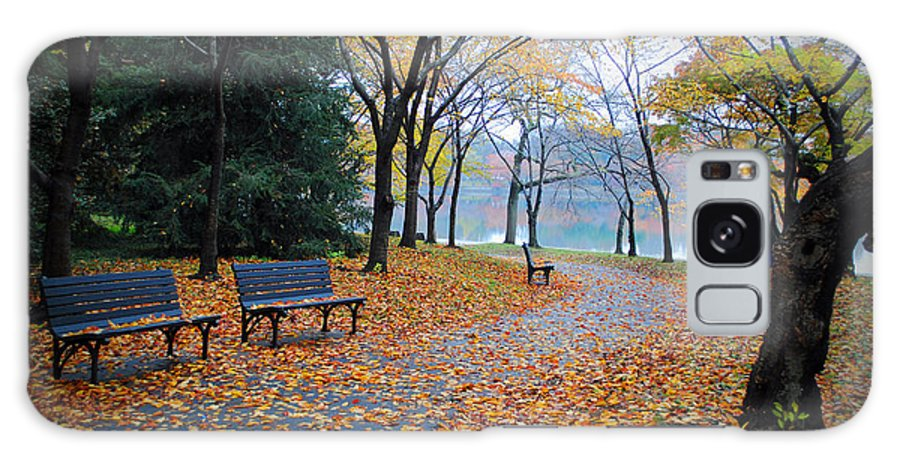 Fall Galaxy S8 Case featuring the photograph Benches Of Fall by Jost Houk