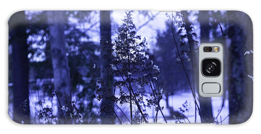 Berkshires Galaxy S8 Case featuring the photograph Berkshires Winter 8 - Massachusetts by Madeline Ellis